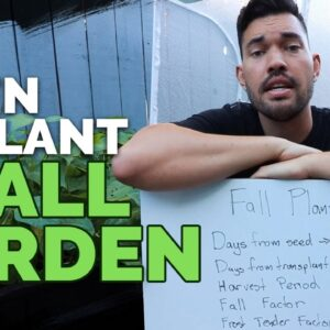 How to PERFECTLY Time Your Fall Garden Planting