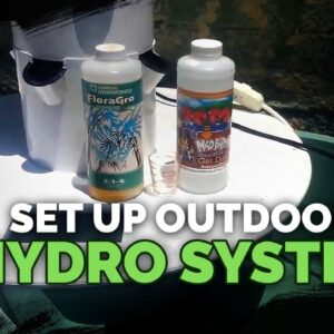 How To Set Up An Outdoor Hydroponics System