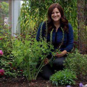 Planting Baptisia & a Tour of the Cottage Garden! 😍🌿// Garden Answer