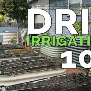 Installing a Drip Irrigation System for Raised Beds 💦 (Before & After)