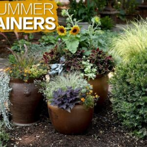 Late Summer Containers 🌿 // Garden Answer