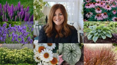 Let's Talk Perennials with Laura from Garden Answer