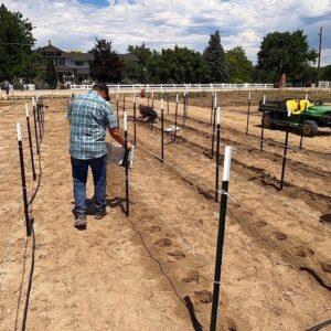 Finally Planting Dahlias! 🤪🙌💚// Garden Answer