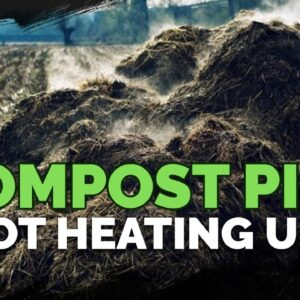 Making Compost: What To Do If Your Pile Isn't Heating Up!