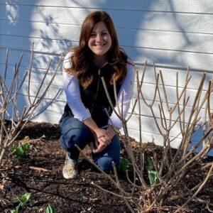 Pruning & Fertilizing My Hydrangeas! ✂�🌿💚// Garden Answer