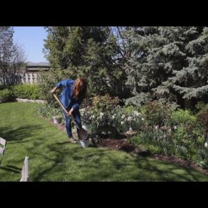 Planting a Few More Perennials in My Parent's Garden! 🥰💚🌿// Garden Answer
