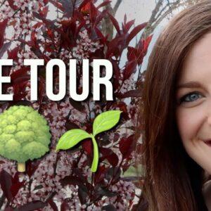 New Tree Tour! 🌳🍁🍃// Garden Answer
