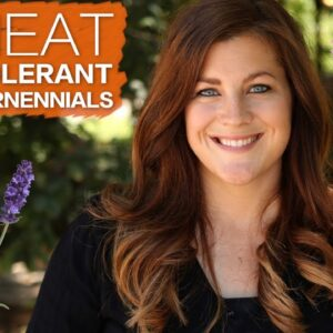 5 Heat Tolerant Perennials 🔥☀️🌿 // Garden Answer