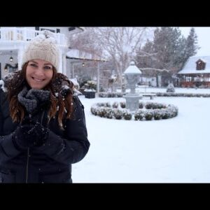 Winter Interest Garden Tour ❄️🌲// Garden Answer