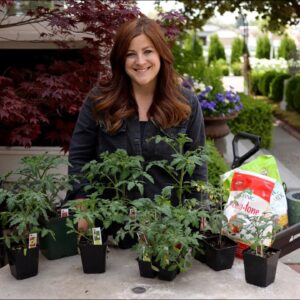 Tomato Growing Basics & Planting Tips! �👩�🌾// Garden Answer