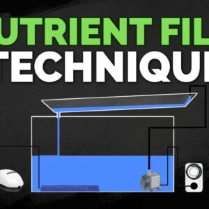 Nutrient Film Technique (NFT) Hydroponics System Tutorial