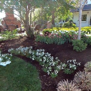 Planting Flowers that Perform Beautifully in both Cool & Warm Temps! 🌸💚💪 // Garden Answer