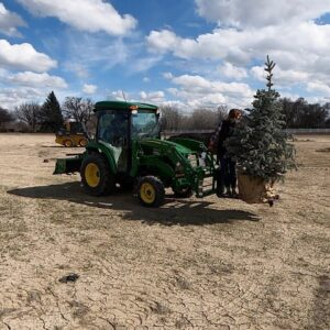 An Easy Easter Project, Winter Sowing Update & Placing Trees! �🌿🌳 // Garden Answer