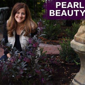 Pearl Glam Beautyberry Spotlight