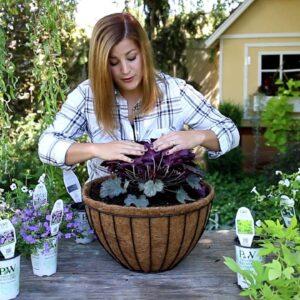 Plant Up A Hanging Basket for Summer!