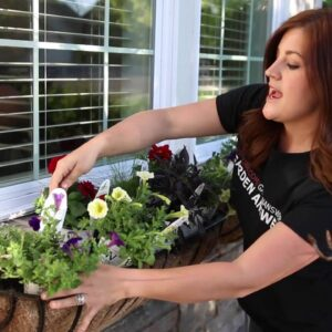 Plant Up A Window Box for Summer