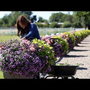 Planter Update and Maintenance! 🌿 // Garden Answer
