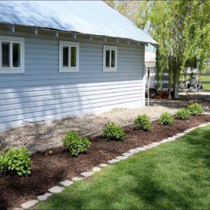 Planting Fire Light Hydrangeas! 🌿🙌// Garden Answer