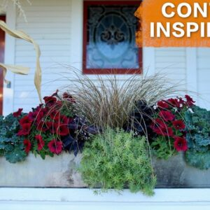 Planting in a Long Container // Garden Answer
