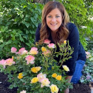 Planting Oso Easy Italian Ice Roses! 🌿 // Garden Answer