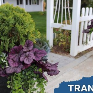 Planting Some Fall Containers // Garden Answer