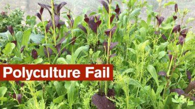 Polyculture Fail