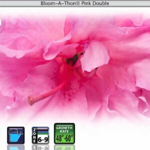 Proven Winners® Gardener Channel: Proven Winners® Bloom-A-Thon Series
