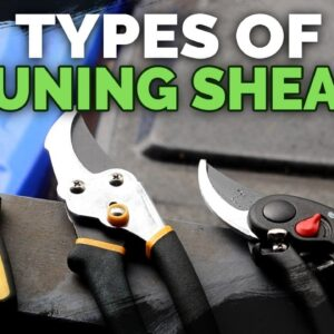 Pruning Shears Explained: Choose the Best Pruners For Your Garden