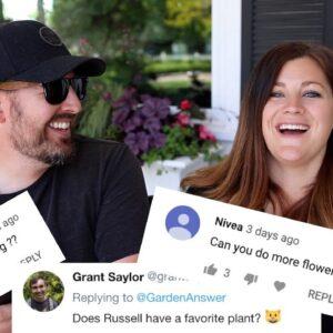 Q&A June 2019 🌿 // Garden Answer