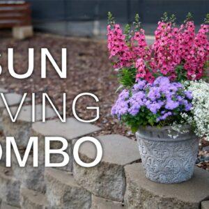 Quick Combo #1--Bright Color for the Sun!