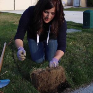 Removing Grass To Create A Corner Garden