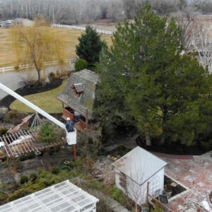 Removing Our Pine Trees! 🌲// Garden Answer