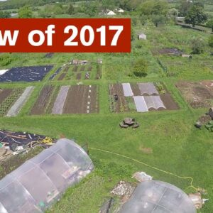 Review of 2017 - The RED Gardens Project