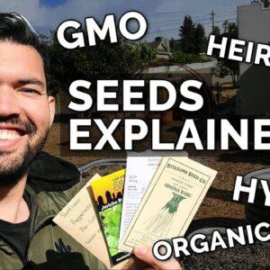 SEEDS EXPLAINED: Heirloom, Hybrid, Organic, and GMO Seeds 🌰