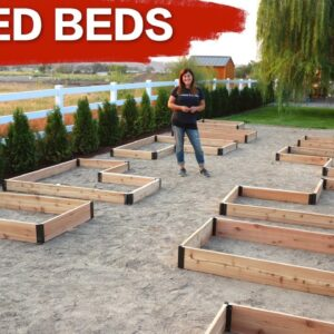 Setting up Raised Beds // Garden Answer