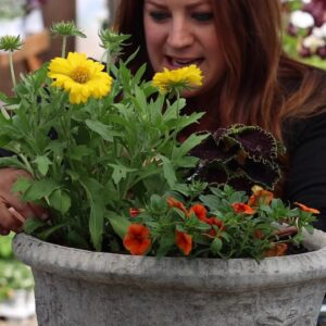 Simple Container Garden Ideas to Try, Part 1