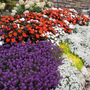 Mission Point Resort on Mackinac Island--A Proven Winners Signature Garden
