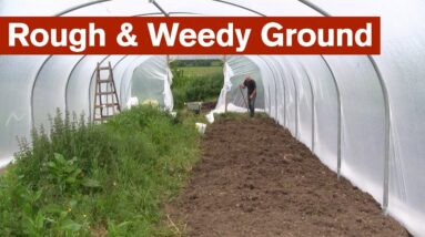 Starting from Rough and Weedy Ground