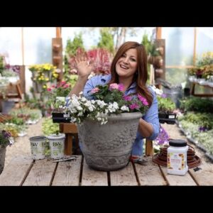 Flower Alley Part 2: Simple Container Ideas for Full Sun! ☀�💚// Garden Answer