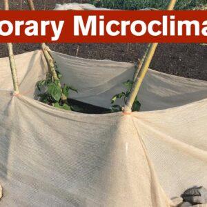 Temporary Microclimates