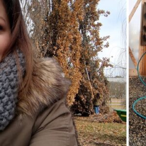 Winter Watering & Flower Bed Cleanup 🌿��// Garden Answer