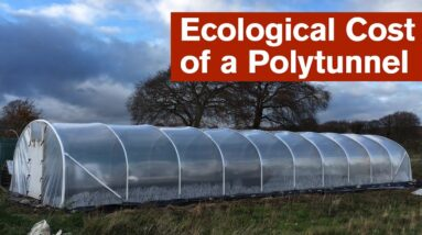 The Ecological Cost of a Polytunnel