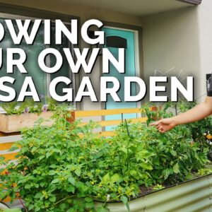 How to Grow Your Own Salsa 🌶️ | Raised Bed Planting Ideas