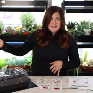Tomato and Pepper Seed Planting Tips