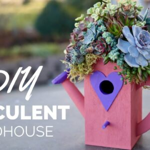 Top Your Birdhouse With Succulents!