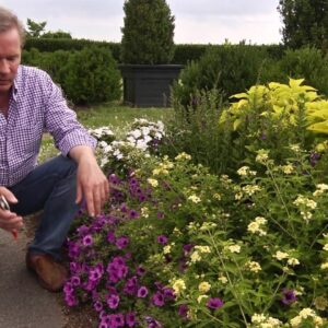 Using Color and Texture in the Landscape with P Allen Smith