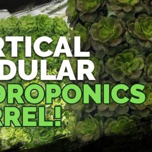Vertical Hydroponics: Awesome Modular Barrel System!
