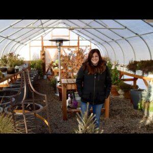 Winter Greenhouse Tour! ❄️🌿// Garden Answer