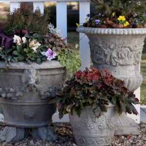 Tough Plants for Early Spring Containers! 💪🌿💚// Garden Answer