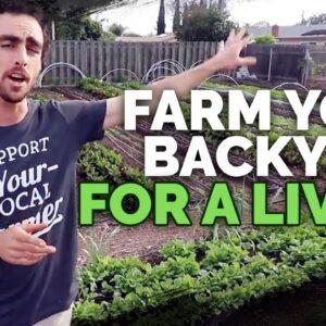 Backyard Farming: 2 Year Market Garden Update of Nature's Always Right Farms